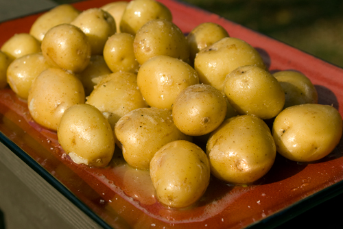 Lemon Garlic Baby Potatoes